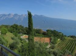 Das Hotel Garni Al Poggio liegt in grüner Umweg unweit des Gardasees