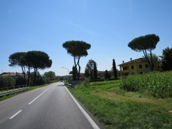 Auf einer Landstraße in der malerischen nördlichen Toskana