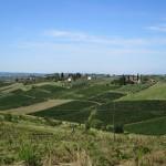 Weinberge und Anwesen in der Toskana zwischen Montecatini Terme und Florenz