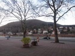 Das Restaurant Alte Münz ist sehr schön am gleichnamigen Neckarmünzplatz in Heidelberg gelegen