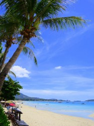Der Chaweng Beach auf Koh Samui.jpg