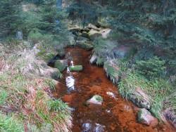 Die rötliche Färbung der Bäche hat nichts mit Umweltverschmutzung, sondern mit aus dem Moor ausgewaschenen Stoffen zu tun