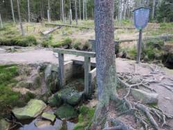 Immer wieder finden sich Informationstafeln am Rande der abenteuerlichen Wanderwege im Harz