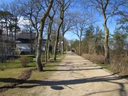 Die Strandpromenade des Ostseebads Boltenhagen lädt zum Spaziergang ein
