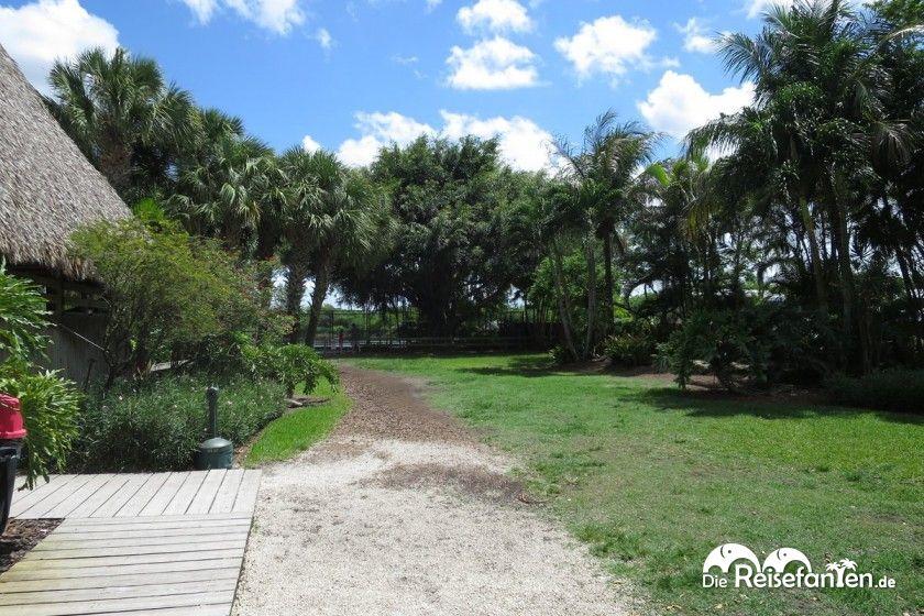 Das Gelände des Gator Parks umfasst auch Alligatorengehege