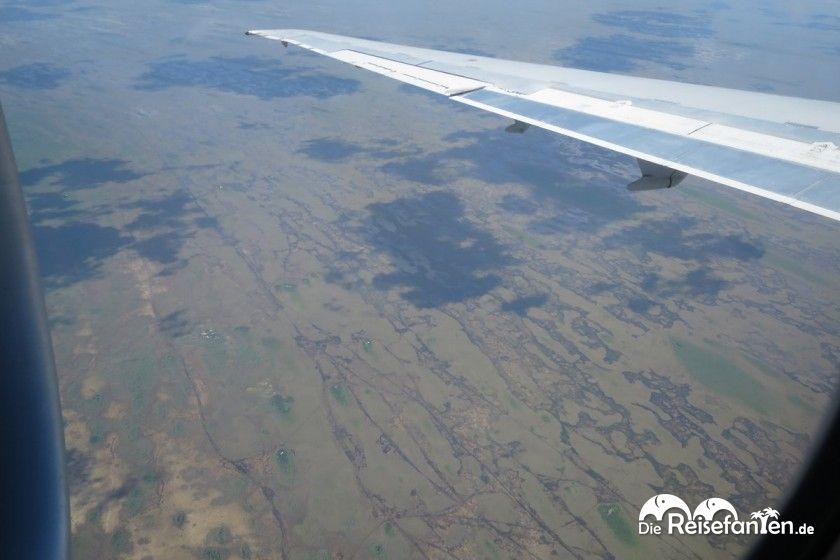 Die endlose Weite der Everglades von oben, Wolkenschatten inklusive