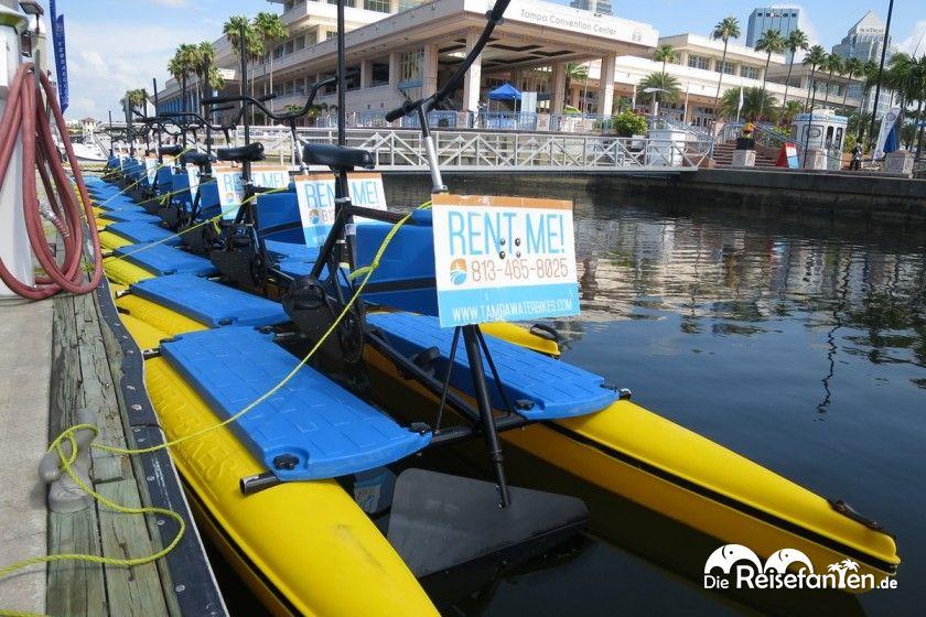 Mit diesen Wasserfahrrädern lässt sich die Wasserwelt Tampas auf eigene Faust entdecken