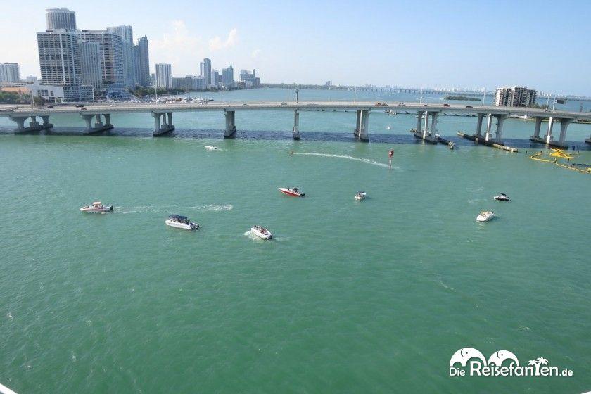 Beim Wendemanöver der Carnival Glory gibt es viele Zaungäste im Wasser