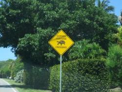 Solch ein Straßenschild wird man in Deutschland eher selten finden