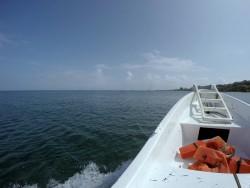 Schnorchelausflug mit dem Boot an der West Bay auf Roatan