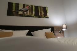 Das eigentliche Zimmer des Wald- und Sporthotels Festenburg hat uns gut gefallen