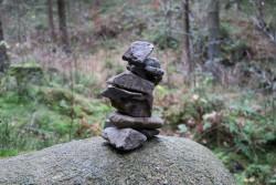 Diese Steinmännchen konnten wir überall im Wald beobachten