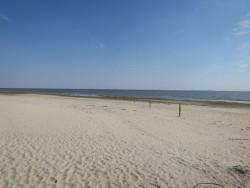 Hier tummeln sich mit etwas Glück die Seehunde am Ostende von Langeoog