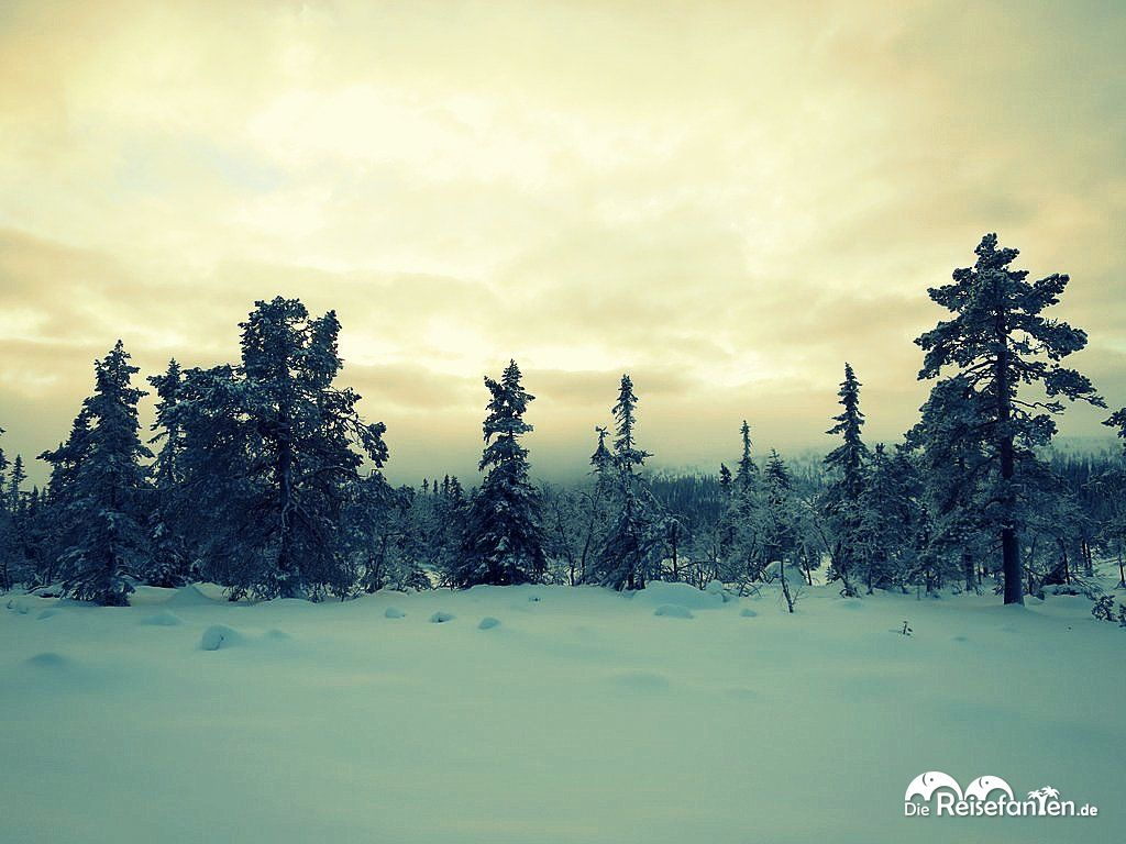 Winterlandschaft in Norwegen