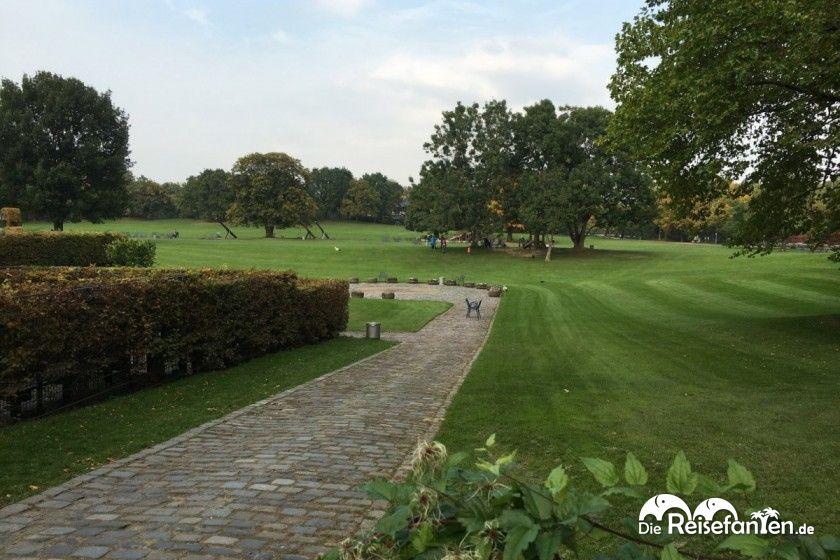 Blick auf die große Freizeitwiese im Luisenpark Mannheim