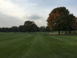 Die große Freizeitwiese im Luisenpark Mannheim