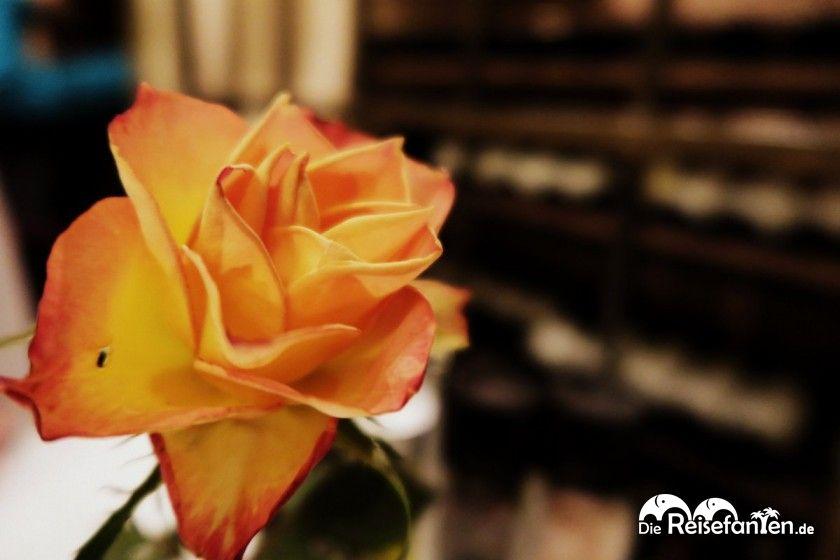 Echte Rosen zieren die Tische in der Osteria Caruso in Berlin