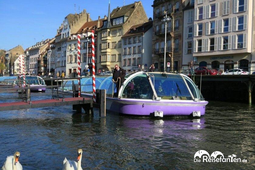 Mit der Batorama Straßburg vom Wasser aus entdecken