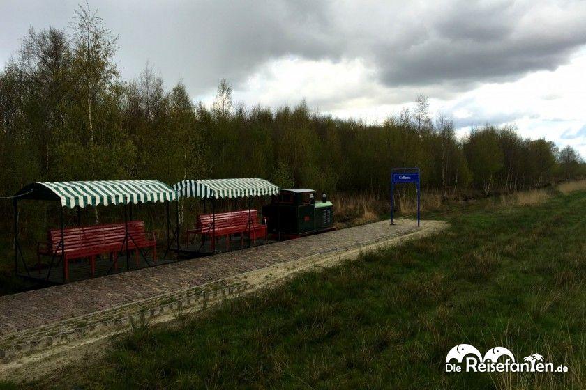 Schmalspurbahn im Veenpark in Emmen