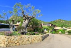 Zugang zur Rezeption im Villa del Golfo