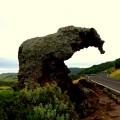 Der große Elefant bei Castelsardo auf Sardinien