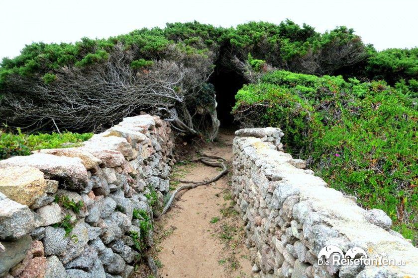 Zugang zum Strand von Portobello auf Sardinien