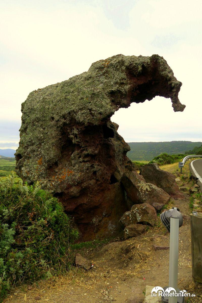 Großer Elefantenfelsen bei Castelsardo auf Sardinien