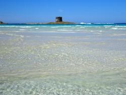 Kristallklares und seichtes Wasser an der Spiaggia Della Pelosa auf Sardinien