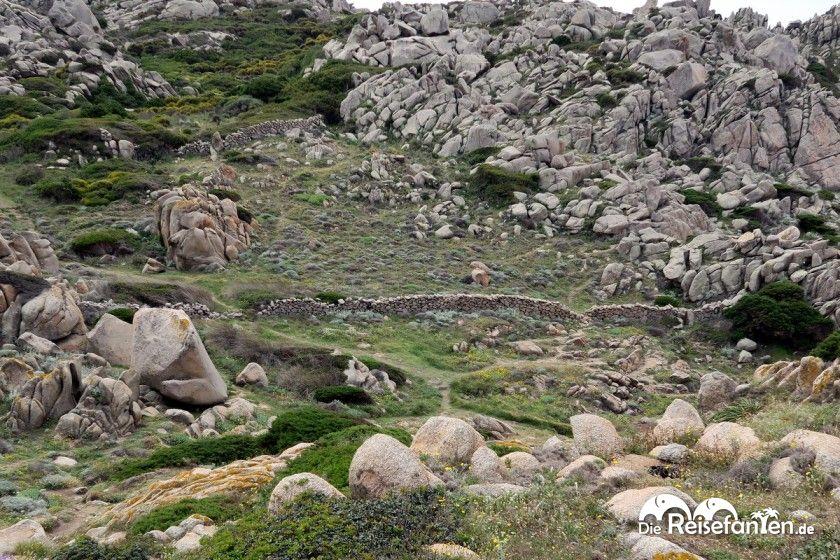 Steinmauern dienten auf Sardinien als Grundstücksgrenzen