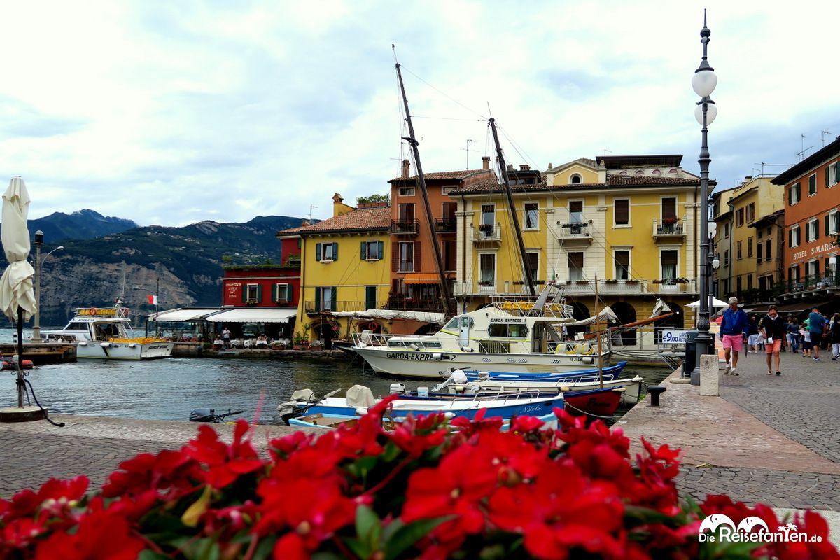 Der Hafen von Malcesine am Gardasee