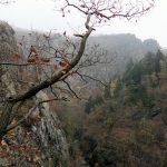 Blick vom Langer Hals im Bodetal im Harz