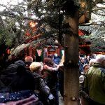 Der Wunschbrunnenwald zum Weihnachtsmarkt in Hannover