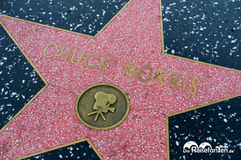 Viele Stars sind am Walk of Fame vertreten