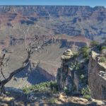 Es geht runter im Grand Canyon Nationalpark