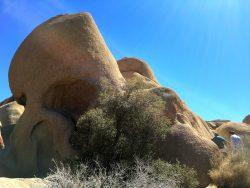 Geformt wie ein Totenkopf im Joshua Tree Nationalpark