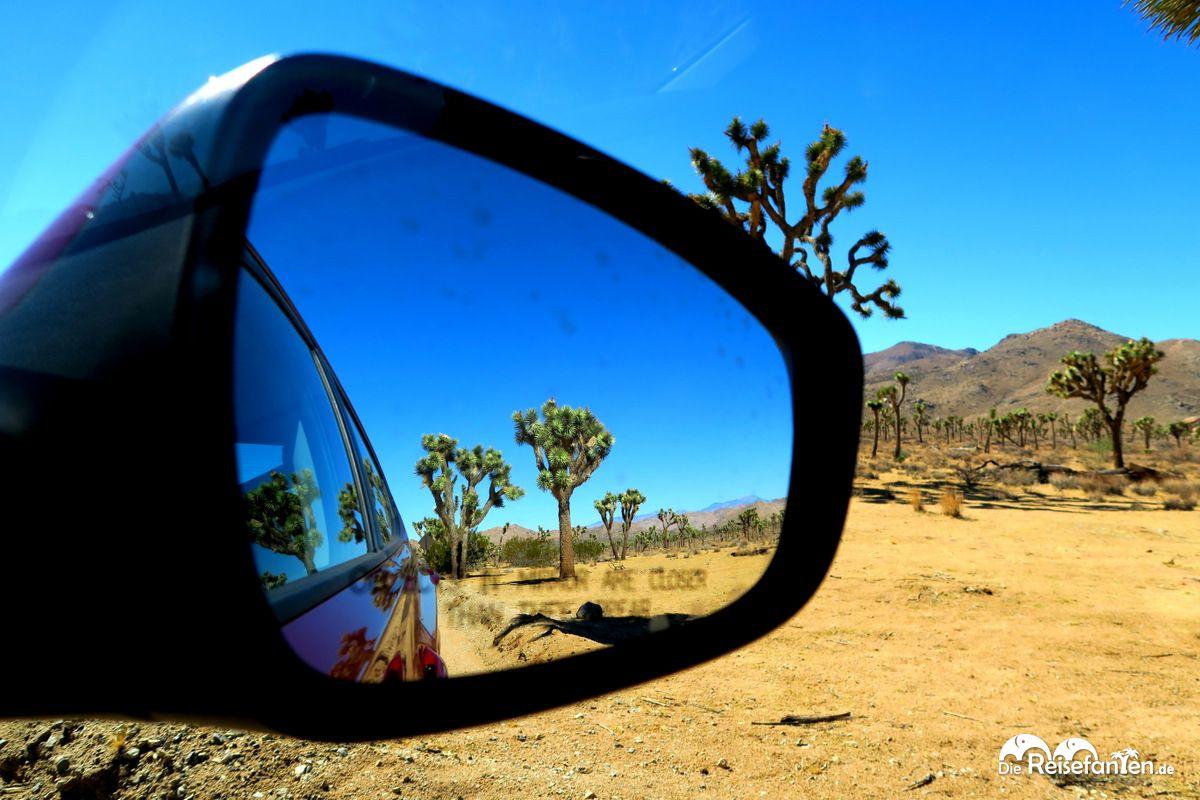 Mit dem Mietwegen unterwegs im Joshua Tree Nationalpark in Kalifornien