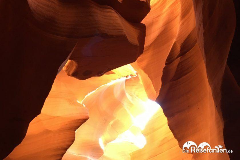 Die Formation eines Löwenkopfes im Lower Antelope Canyon