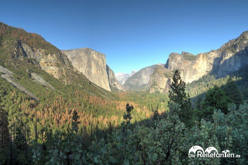 Auf der linken Seite der majestätische El Capitan im Yosemite Valley