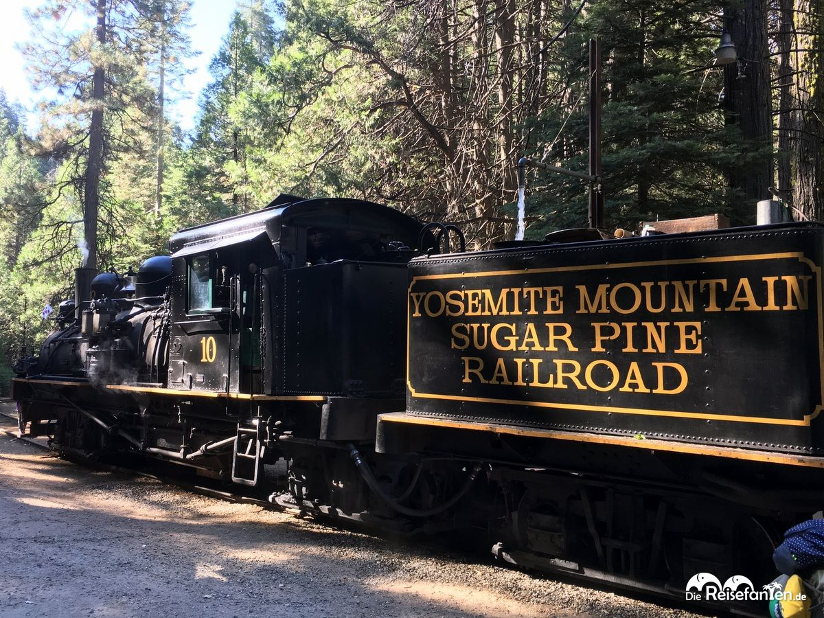 Die Yosemite Mountain Sugar Pine Railroad in Großaufnahme
