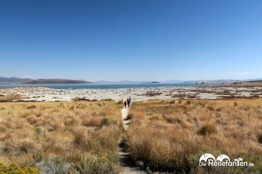 Der Fußweg zum Mono Lake