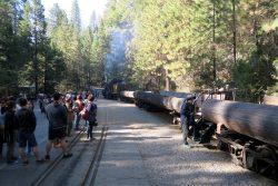Die Yosemite Mountain Sugar Pine Railroad ist bereit zum Einsteigen