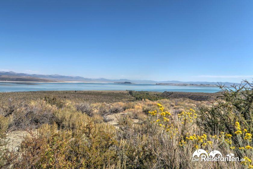 Weiter Blick über den Mono Lake