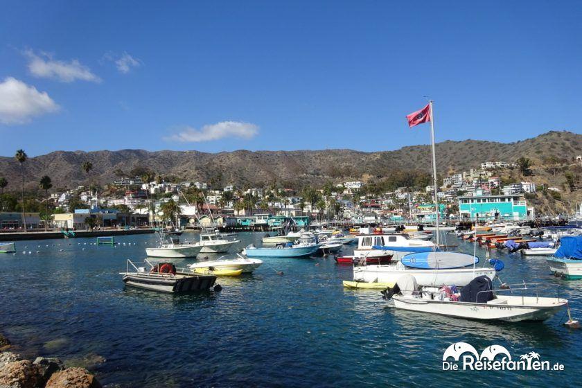 Blick auf Avalon auf Catalina Island