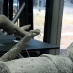 Der Knochen des Zeigefingers bei einem Toten aus Pompeji