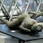 Die Toten aus Pompeji werden in einer besonderen Halle aufgebahrt