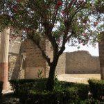 Ein Garten in einem Haus in Pompeji