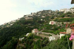 Blick auf die Zitronenplantagen in der Umgebung vom Il Rifugio del Poeta in Ravello