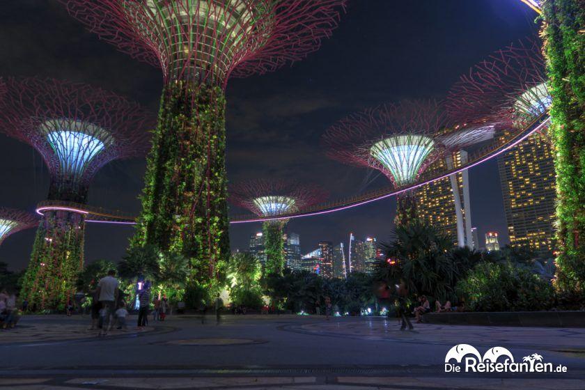 Die beleuchteten Bäume im Gardens by the Bay in Singapur