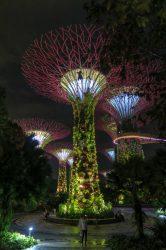 Der Gardens by the Bay in Singapur ist bei Besuchern und Einheimischen sehr beliebt