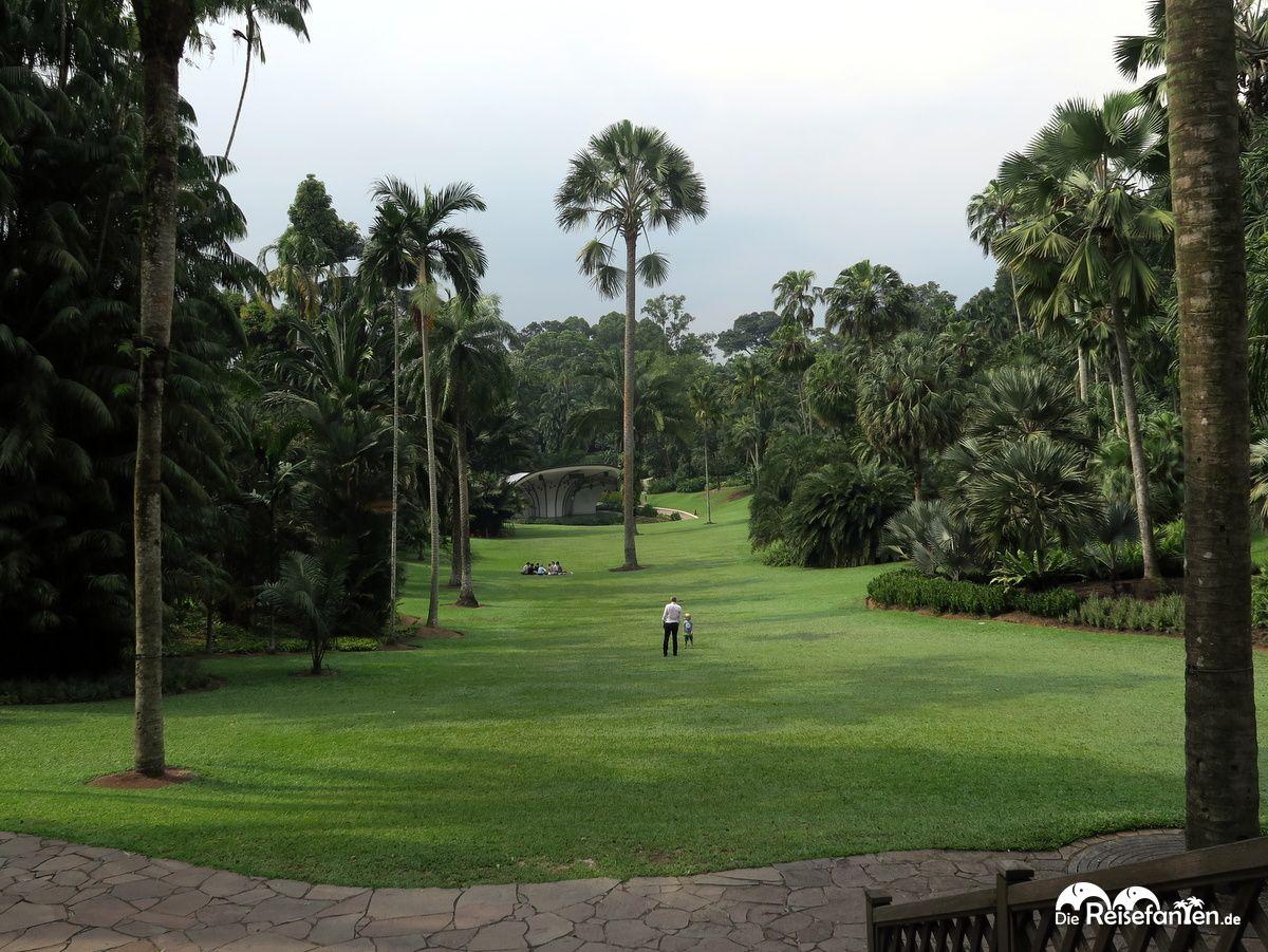 Große Wiese im Botanischen Garten in Singapur